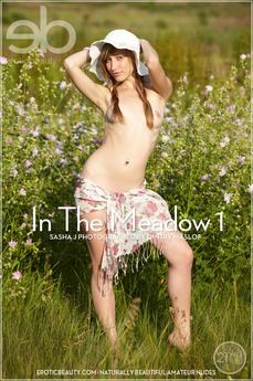 Erotic Beauty In The Meadow 1 Sasha J