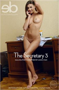 The Secretary 2