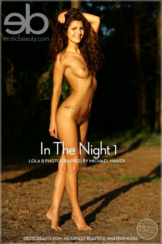 In The Night 1