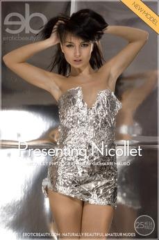 Presenting Nicollet