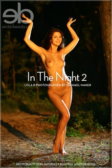 In The Night 2