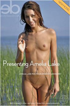 Presenting Amelia
