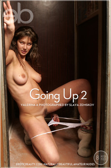 Going Up 2