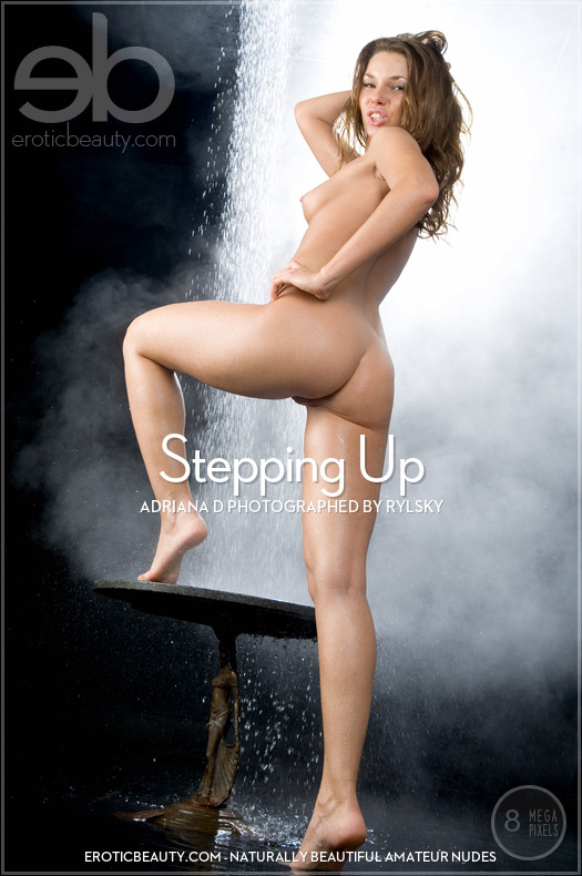 Stepping Up featuring Adriana D by Rylsky
