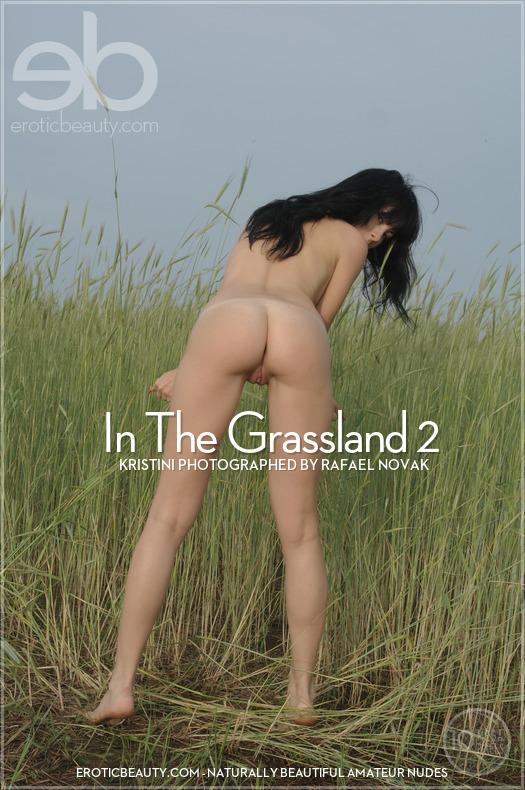 In The Grassland 2 featuring Kristini by Rafael Novak