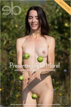 Presenting Adel Morel