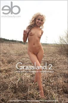 Grasslands 2