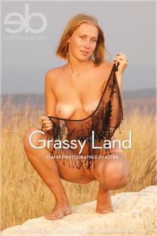 Grassy Land