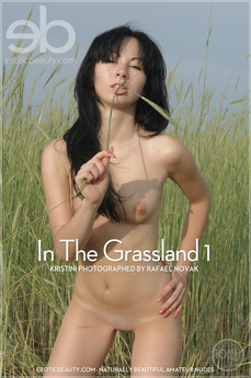 In The Grasslands 1