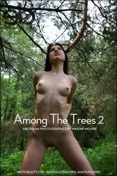 Among The Trees 2