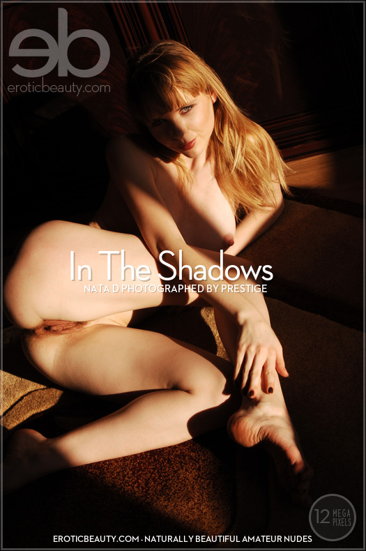 In The Shadows featuring Nata D by Prestige