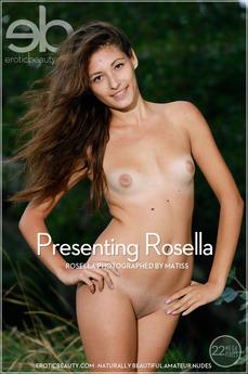 Presenting Rosella