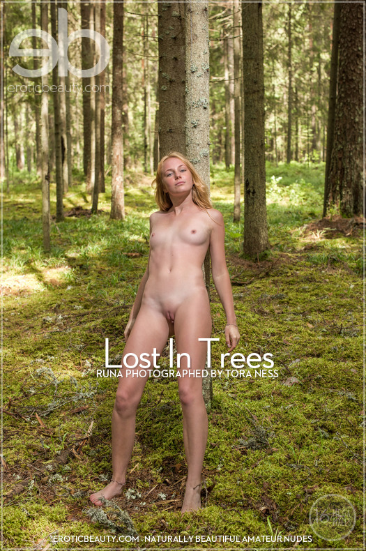 Lost In Trees