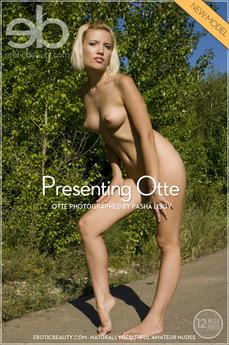 Presenting Otte