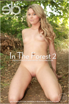 In The Forest 2
