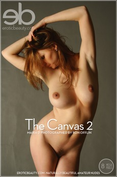 The Canvas 2