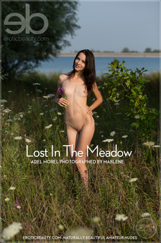 Lost In The Meadow