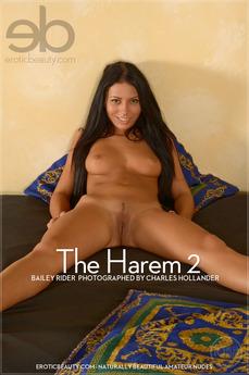 The Harem 3