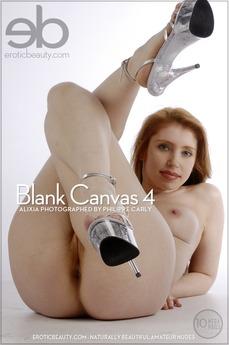 Blank Canvas 4
