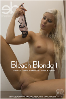 Bleach Blonde 1