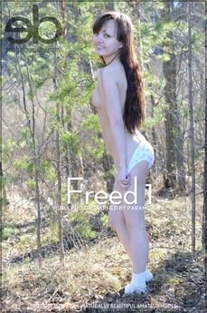 Freed 1