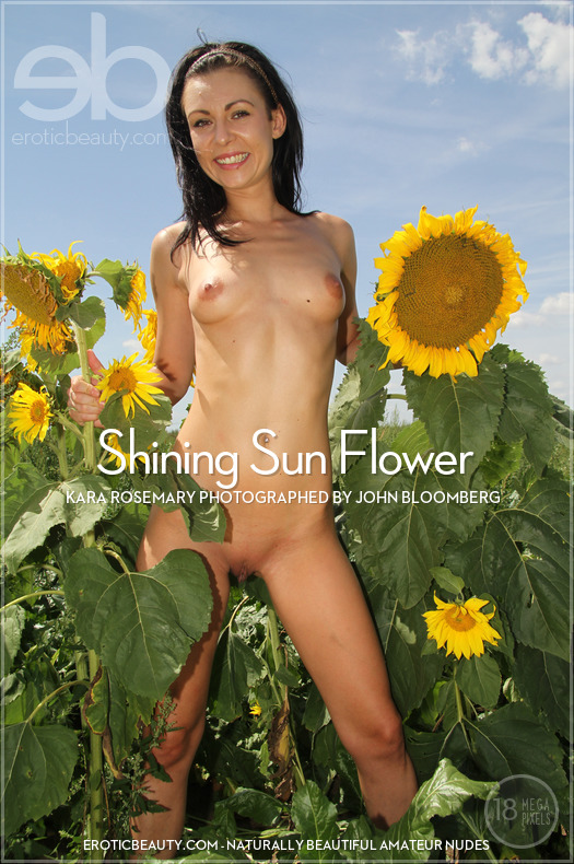 Shining Sun Flower featuring Kara Rosemary by John Bloomberg