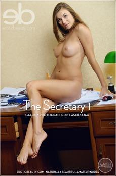 The Secretary 1