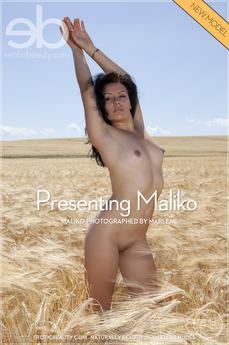 Presenting Maliko