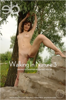 Walking In Nature 3