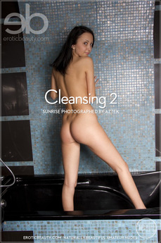 Cleansing 2